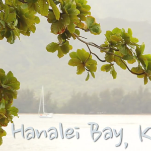 From Italy with love Kauai wedding videographer